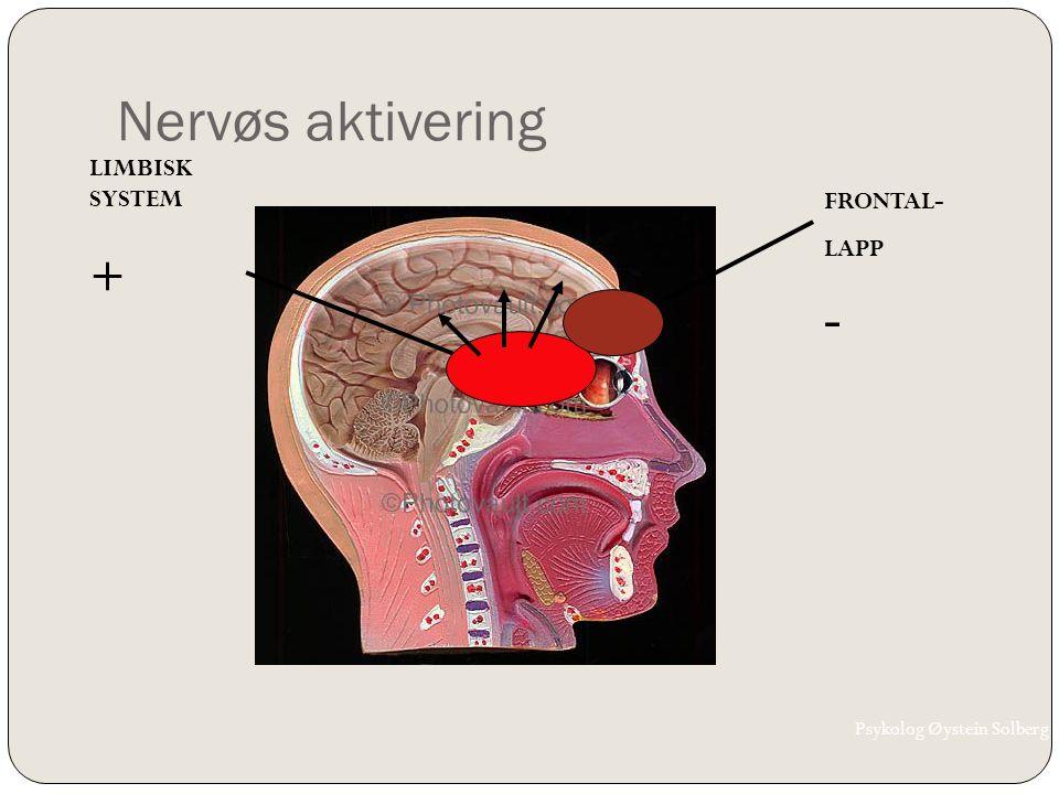 Nervøs aktivering LIMBISK SYSTEM + FRONTAL- LAPP - Psykolog Øystein Solberg