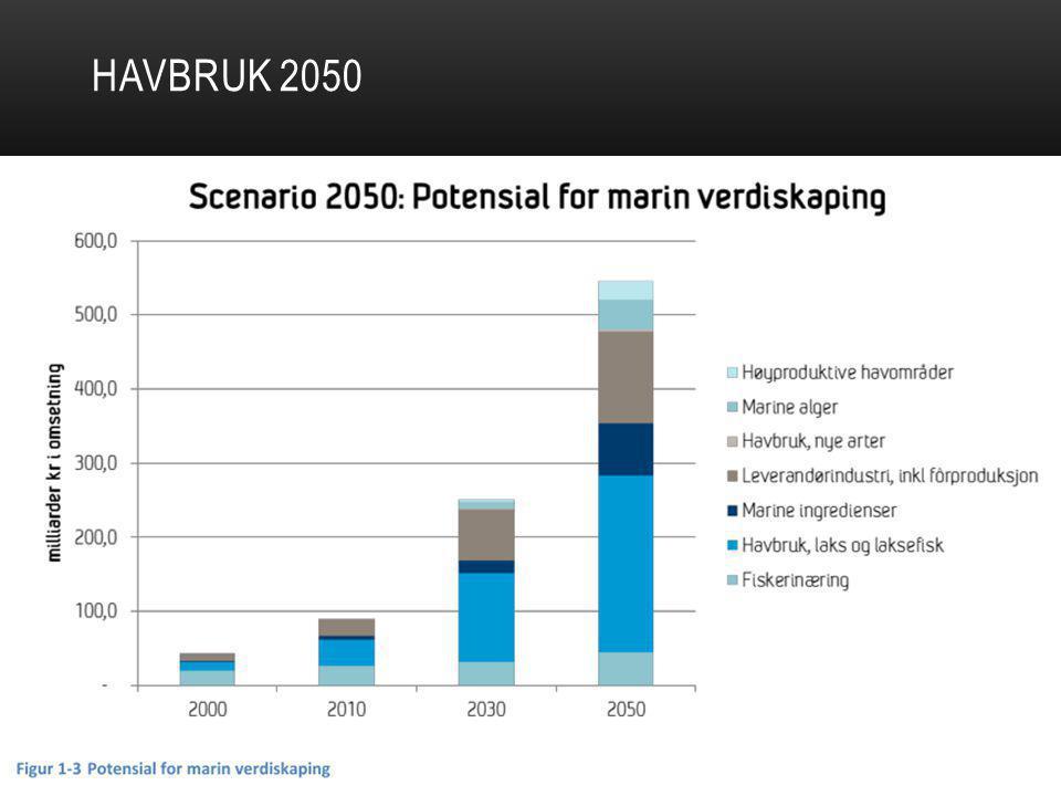 HAVBRUK 2050