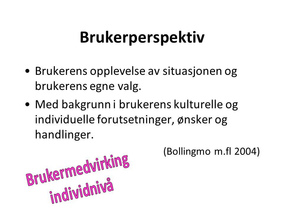 Brukerperspektiv Brukerens opplevelse av situasjonen og brukerens egne valg. Med bakgrunn i brukerens kulturelle og individuelle forutsetninger, ønske