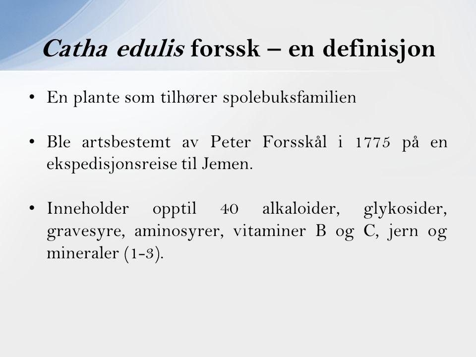 En plante som tilhører spolebuksfamilien Ble artsbestemt av Peter Forsskål i 1775 på en ekspedisjonsreise til Jemen. Inneholder opptil 40 alkaloider,