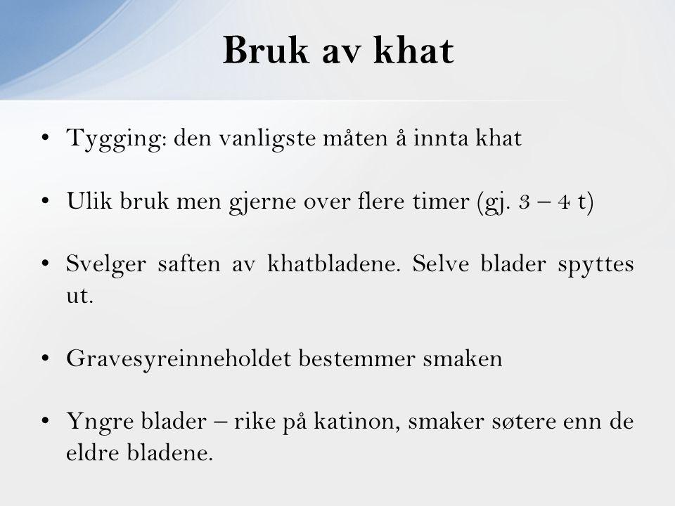 Tygging: den vanligste måten å innta khat Ulik bruk men gjerne over flere timer (gj. 3 – 4 t) Svelger saften av khatbladene. Selve blader spyttes ut.