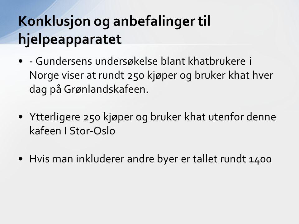 - Gundersens undersøkelse blant khatbrukere i Norge viser at rundt 250 kjøper og bruker khat hver dag på Grønlandskafeen. Ytterligere 250 kjøper og br