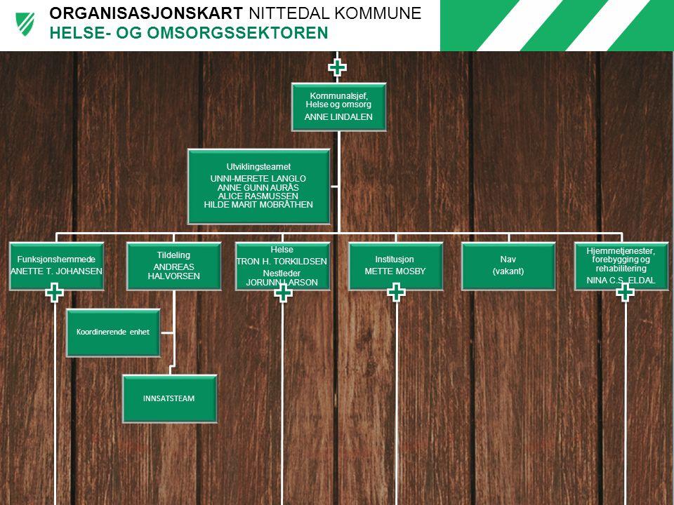 ORGANISASJONSKART NITTEDAL KOMMUNE Kommunalsjef, Helse og omsorg ANNE LINDALEN Funksjonshemmede ANETTE T. JOHANSEN Tildeling ANDREAS HALVORSEN INNSATS