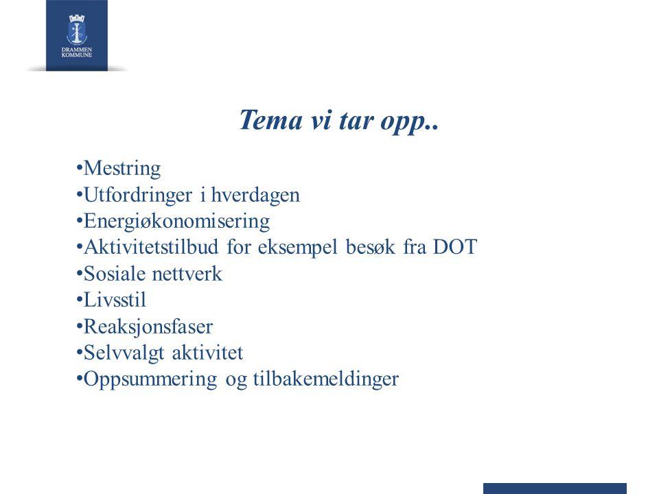 Tema vi tar opp.. Mestring Utfordringer i hverdagen Energiøkonomisering Aktivitetstilbud for eksempel besøk fra DOT Sosiale nettverk Livsstil Reaksjon