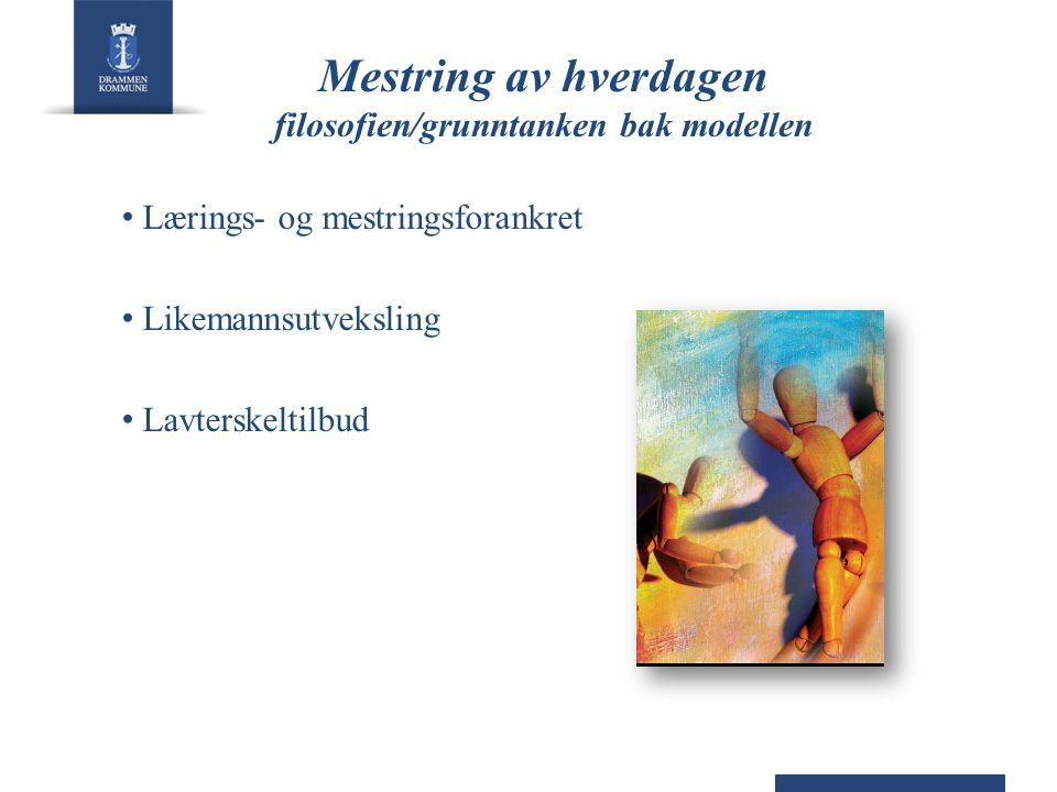Mestring av hverdagen filosofien/grunntanken bak modellen Lærings- og mestringsforankret Likemannsutveksling Lavterskeltilbud
