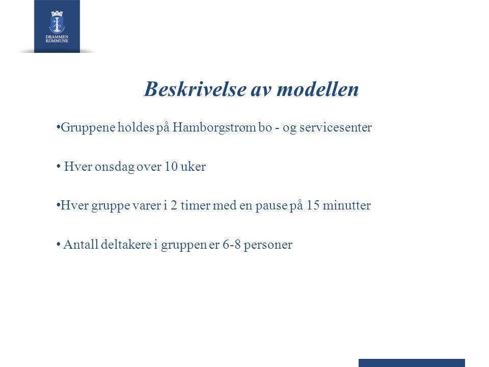 Beskrivelse av modellen Gruppene holdes på Hamborgstrøm bo - og servicesenter Hver onsdag over 10 uker Hver gruppe varer i 2 timer med en pause på 15 minutter Antall deltakere i gruppen er 6-8 personer
