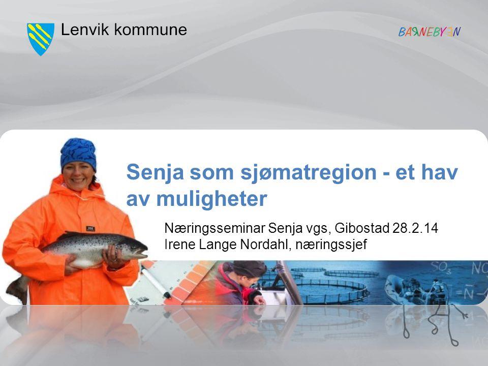 Sjømat - Senja Eksportverdi 2,7 milliarder kroner + ringvirkninger En økning på 1 milliard kroner sammenlignet med tallene fra 2007 Kr 180.000 pr innbygger.