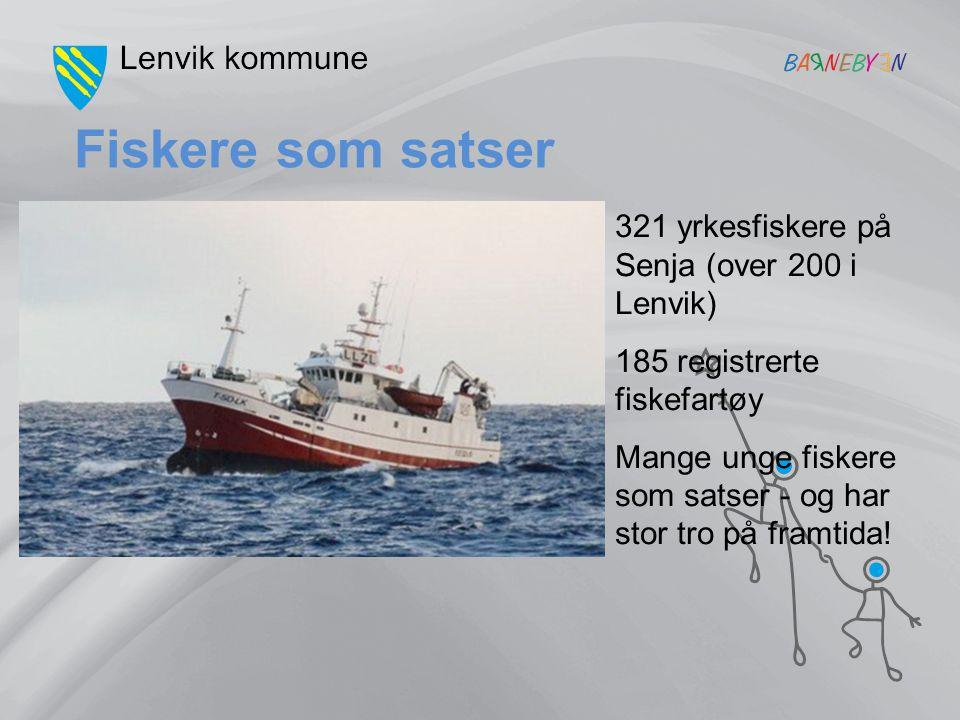 Fiskere som satser 321 yrkesfiskere på Senja (over 200 i Lenvik) 185 registrerte fiskefartøy Mange unge fiskere som satser - og har stor tro på framti