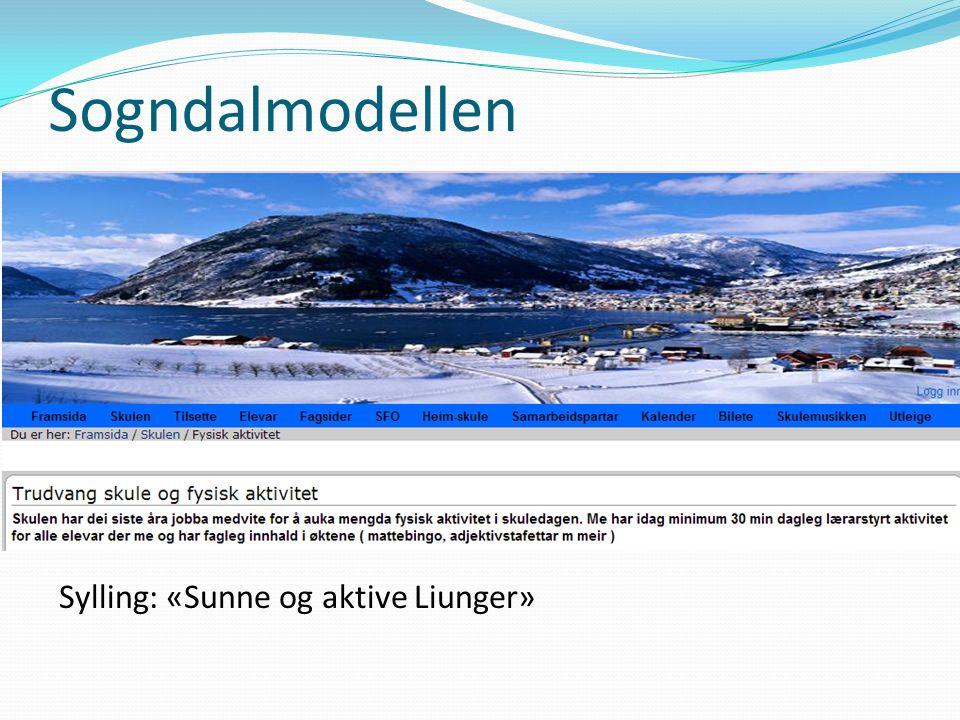 Sogndalmodellen Sylling: «Sunne og aktive Liunger»