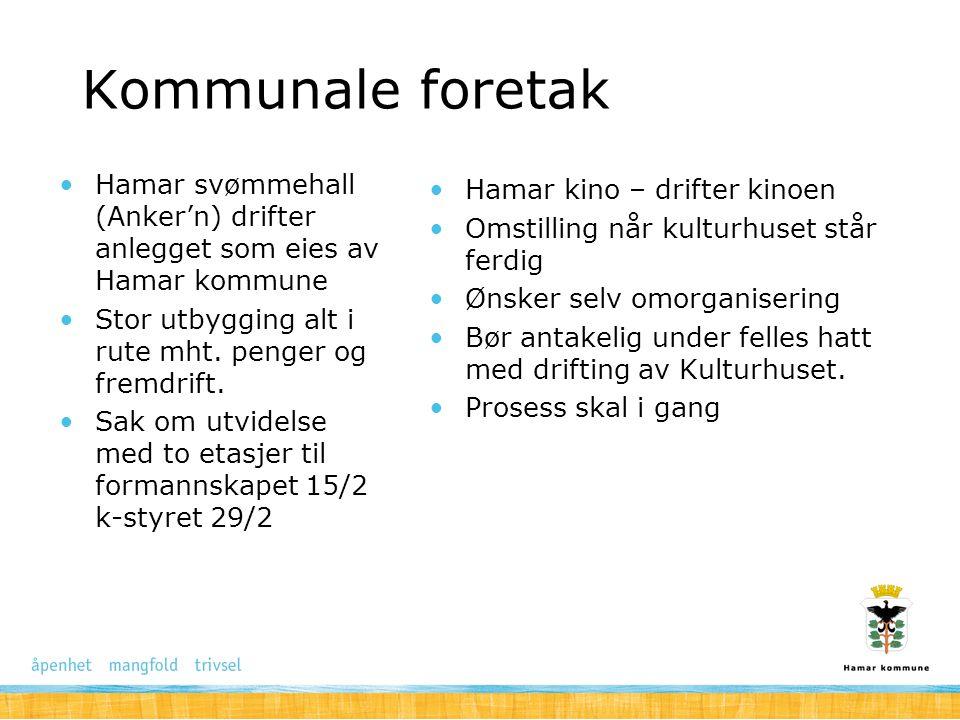 Kommunale foretak Hamar svømmehall (Anker'n) drifter anlegget som eies av Hamar kommune Stor utbygging alt i rute mht. penger og fremdrift. Sak om utv