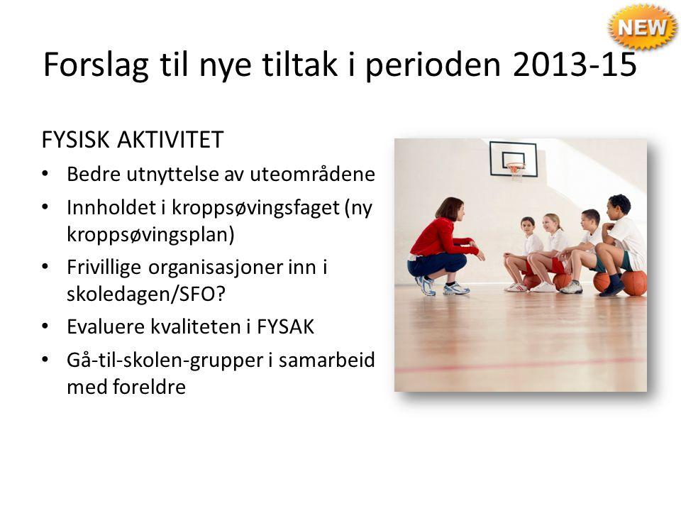 Forslag til nye tiltak i perioden 2013-15 FYSISK AKTIVITET Bedre utnyttelse av uteområdene Innholdet i kroppsøvingsfaget (ny kroppsøvingsplan) Frivill