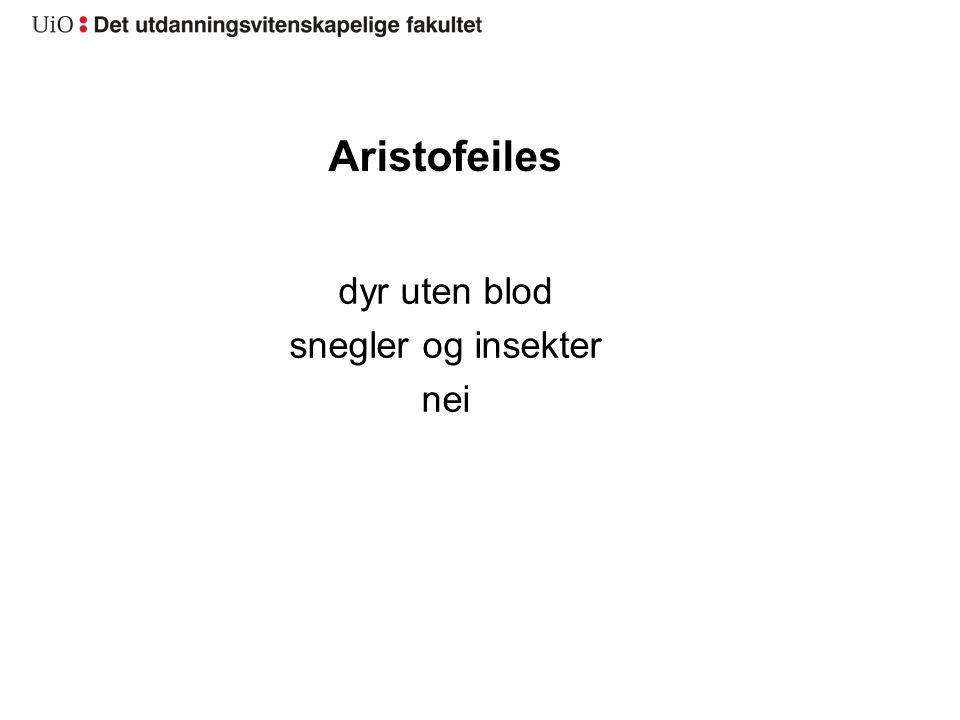 Aristofeiles dyr uten blod snegler og insekter nei