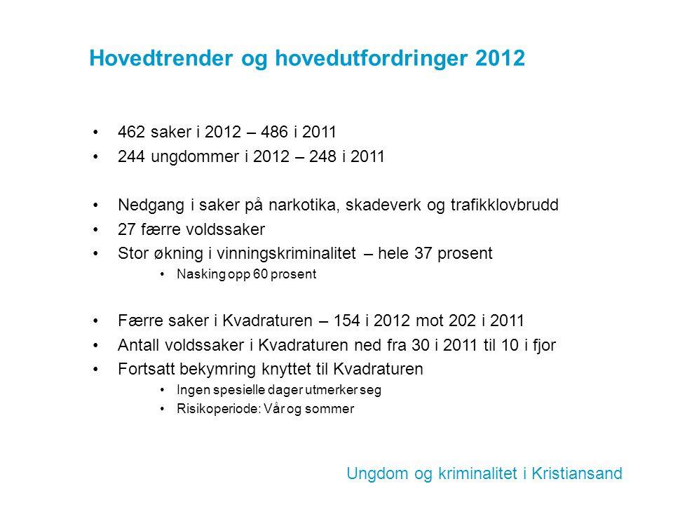 Hovedtrender og hovedutfordringer 2012 462 saker i 2012 – 486 i 2011 244 ungdommer i 2012 – 248 i 2011 Nedgang i saker på narkotika, skadeverk og traf
