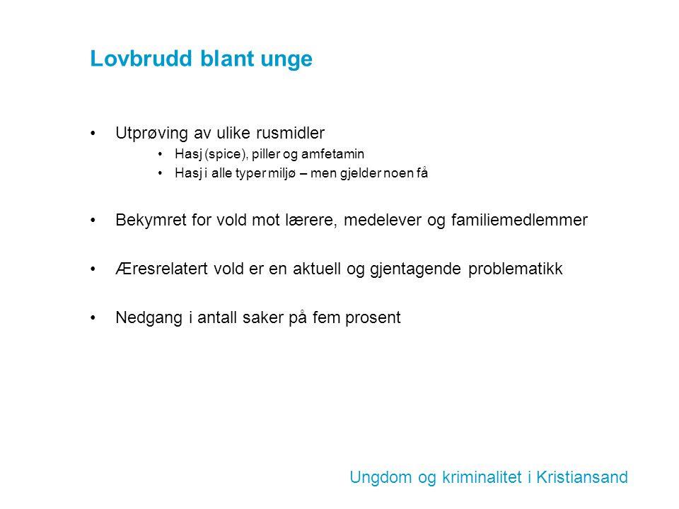 Ungdom og kriminalitet i Kristiansand Lovbrudd blant unge Utprøving av ulike rusmidler Hasj (spice), piller og amfetamin Hasj i alle typer miljø – men
