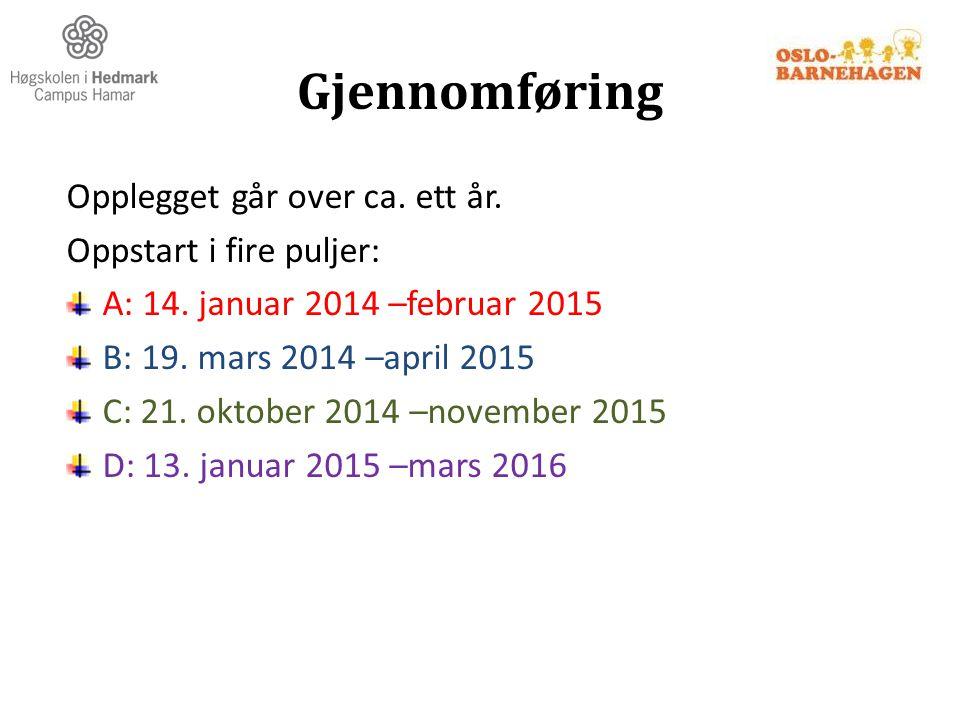 Gjennomføring Opplegget går over ca. ett år. Oppstart i fire puljer: A: 14. januar 2014 –februar 2015 B: 19. mars 2014 –april 2015 C: 21. oktober 2014