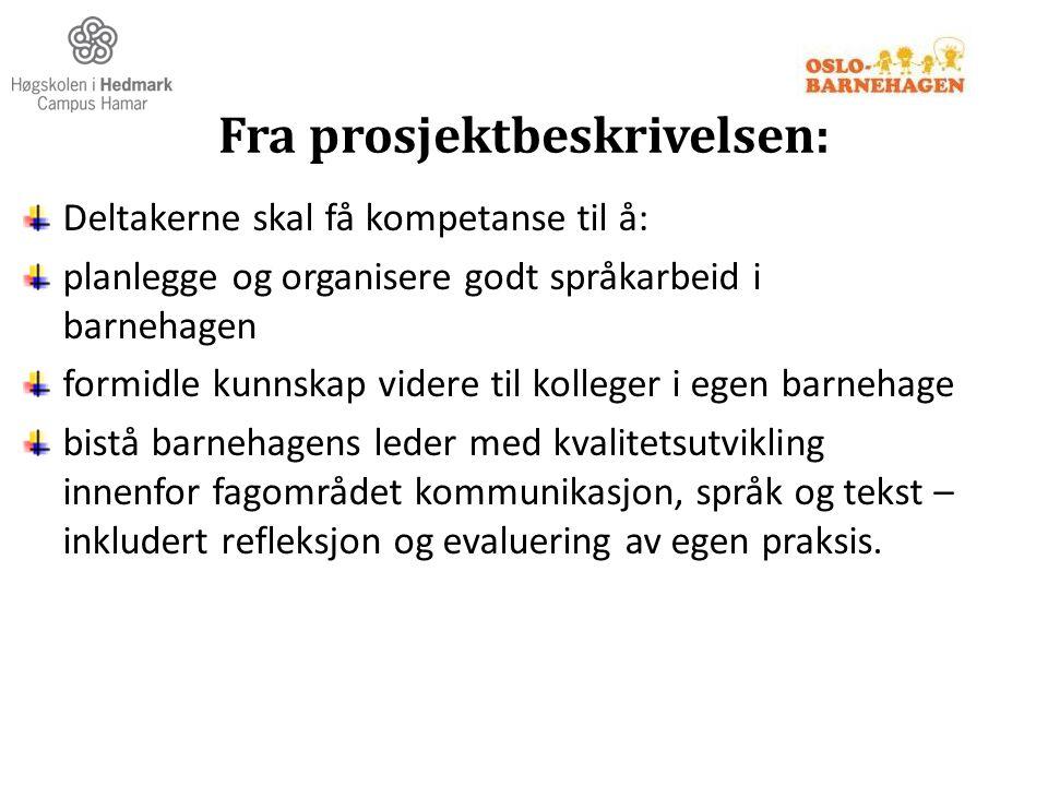 Fra prosjektbeskrivelsen: Deltakerne skal få kompetanse til å: planlegge og organisere godt språkarbeid i barnehagen formidle kunnskap videre til koll