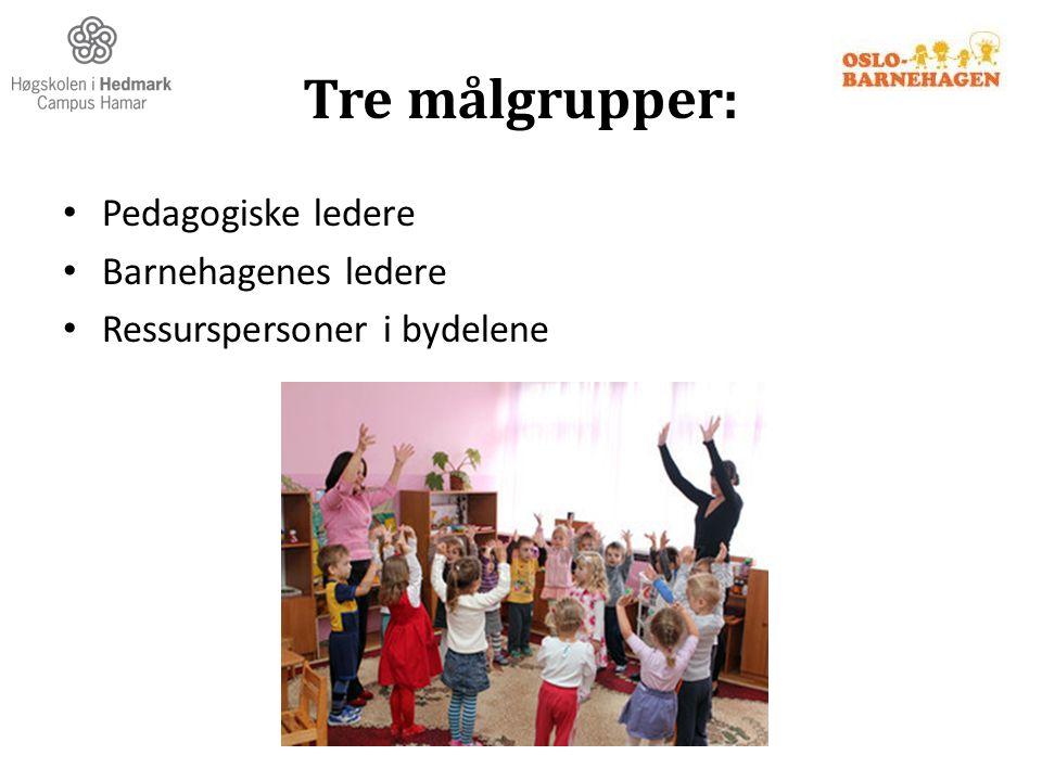 Tre målgrupper: Pedagogiske ledere Barnehagenes ledere Ressurspersoner i bydelene