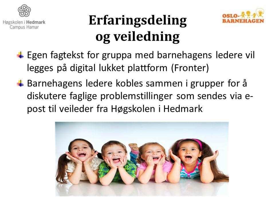 Erfaringsdeling og veiledning Egen fagtekst for gruppa med barnehagens ledere vil legges på digital lukket plattform (Fronter) Barnehagens ledere kobl