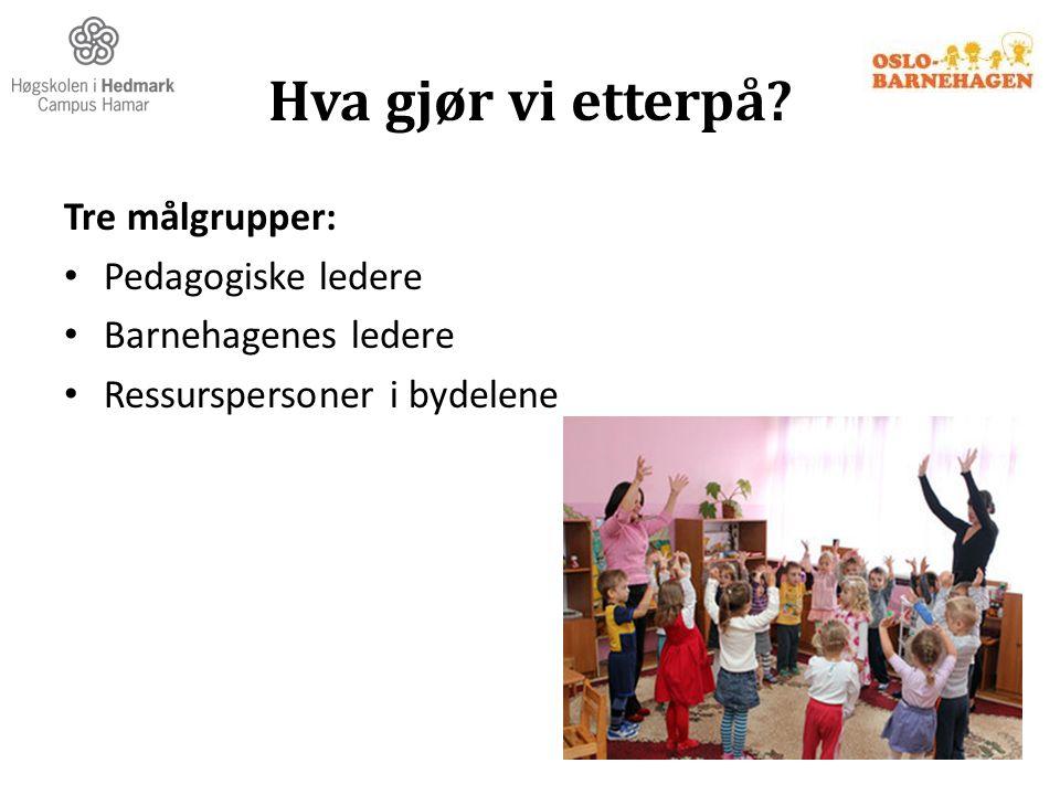 Hva gjør vi etterpå? Tre målgrupper: Pedagogiske ledere Barnehagenes ledere Ressurspersoner i bydelene