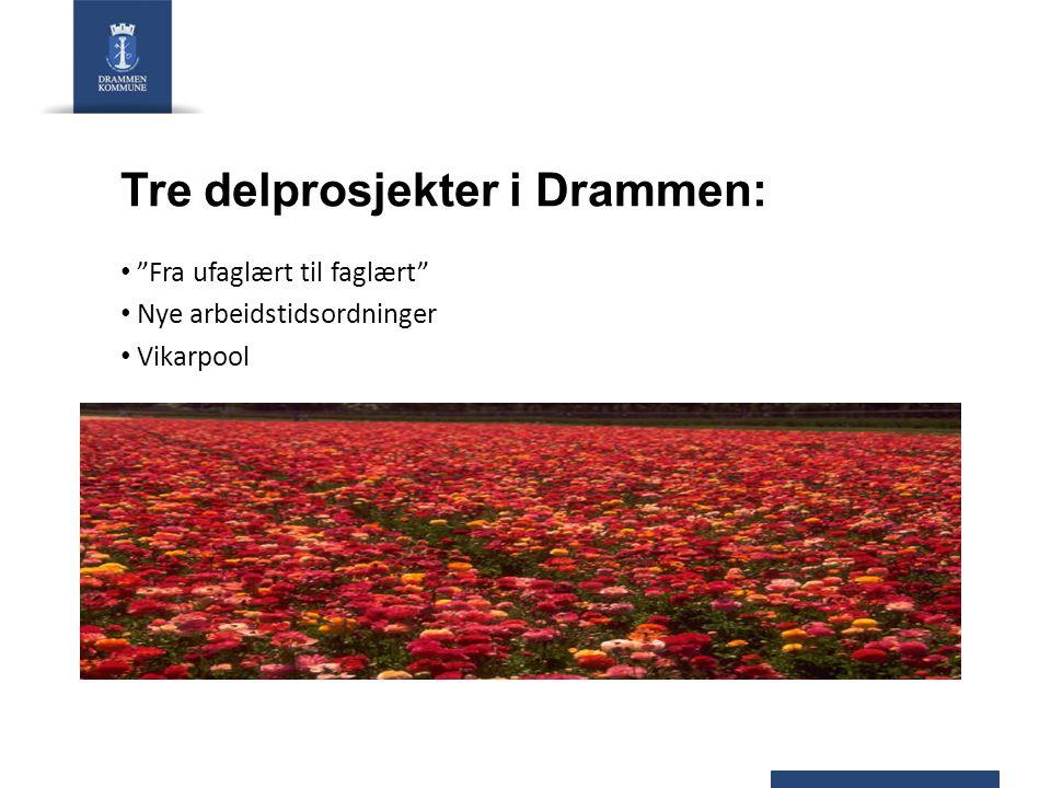 """Tre delprosjekter i Drammen: """"Fra ufaglært til faglært"""" Nye arbeidstidsordninger Vikarpool"""