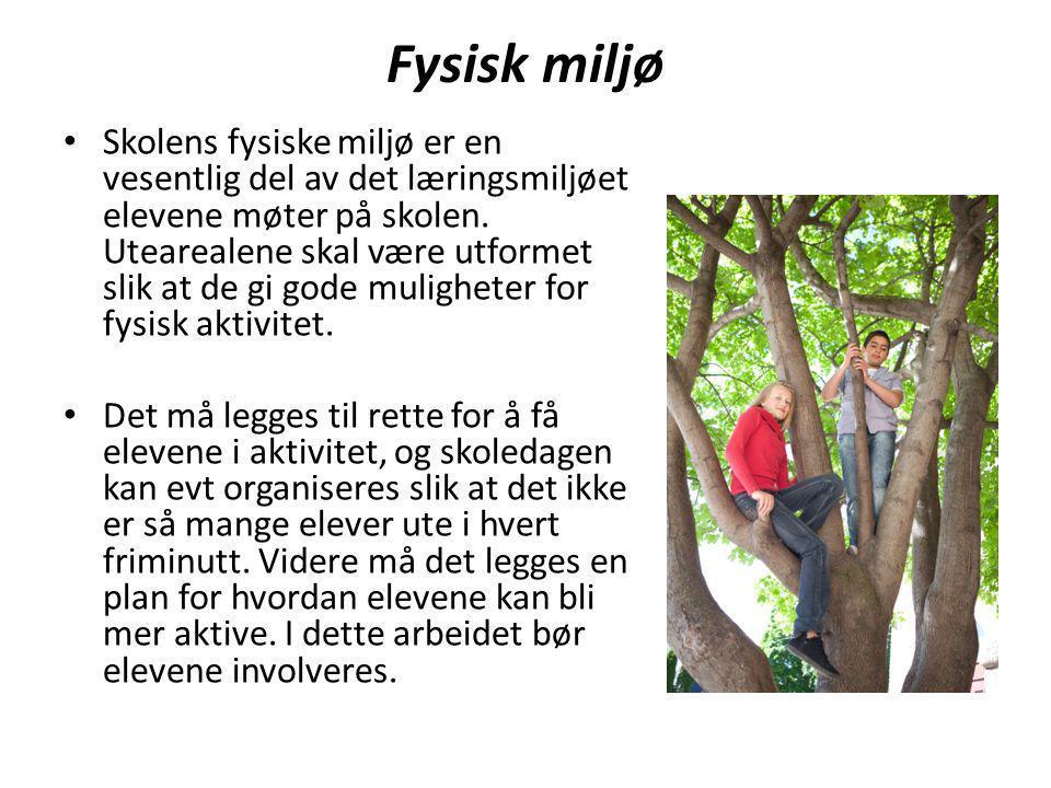 Kjetil & KjartansTrivselsprogram I arbeidet med å etablere et godt læringsmiljø er det avgjørende at skolene sørger for at elevene også har positive aktiviteter i friminuttene.