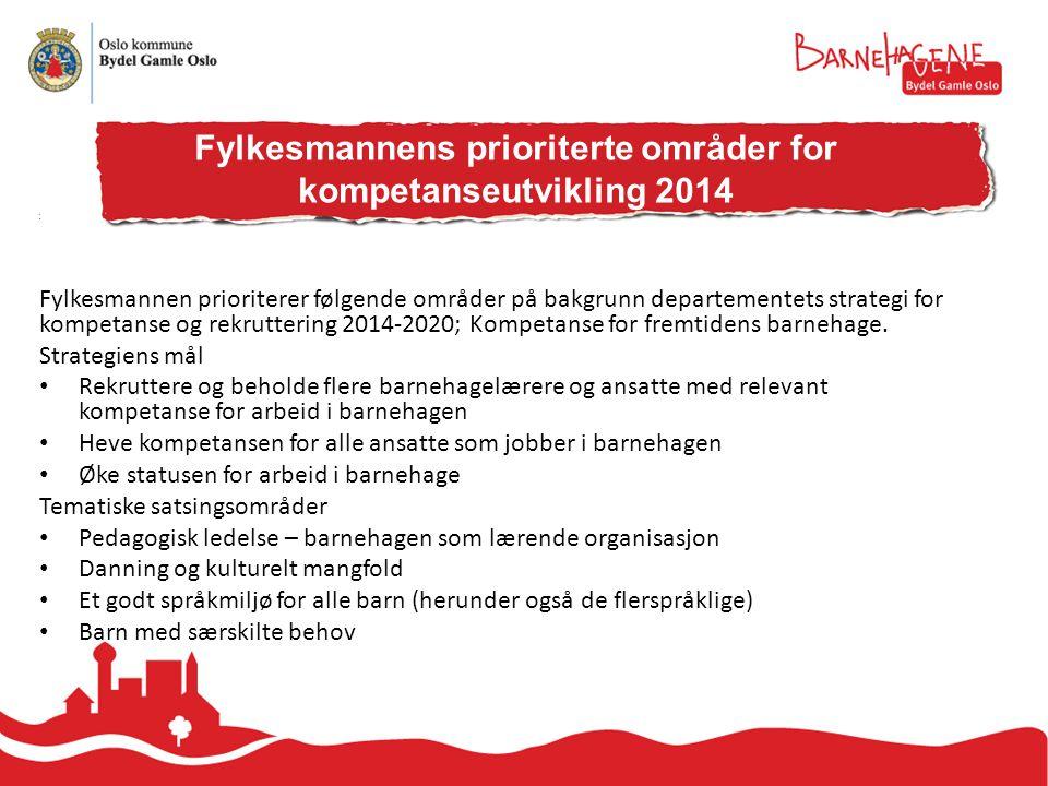 Fylkesmannen prioriterer følgende områder på bakgrunn departementets strategi for kompetanse og rekruttering 2014-2020; Kompetanse for fremtidens barnehage.
