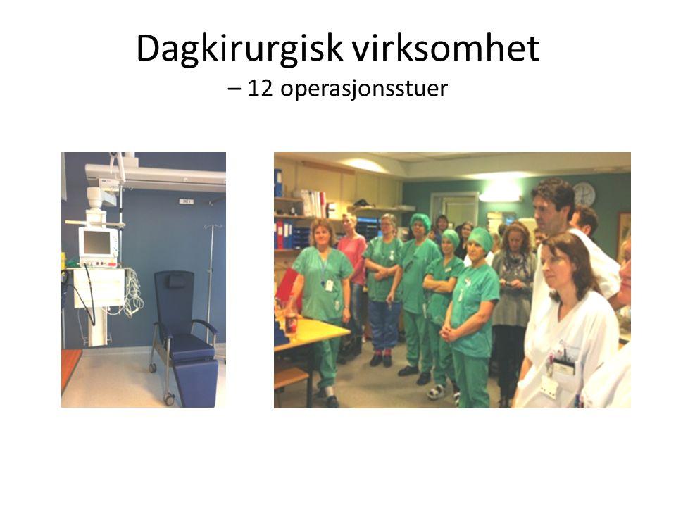 Dagkirurgisk virksomhet – 12 operasjonsstuer