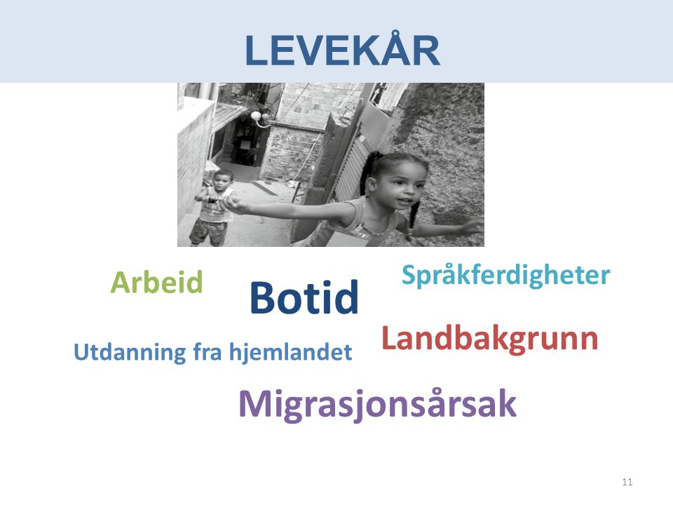 LEVEKÅR Landbakgrunn Arbeid Migrasjonsårsak Utdanning fra hjemlandet Botid Språkferdigheter 11