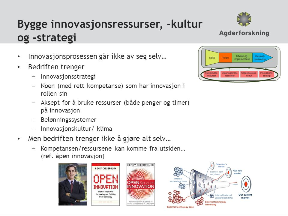 Bygge innovasjonsressurser, -kultur og -strategi Innovasjonsprosessen går ikke av seg selv… Bedriften trenger – Innovasjonsstrategi – Noen (med rett k