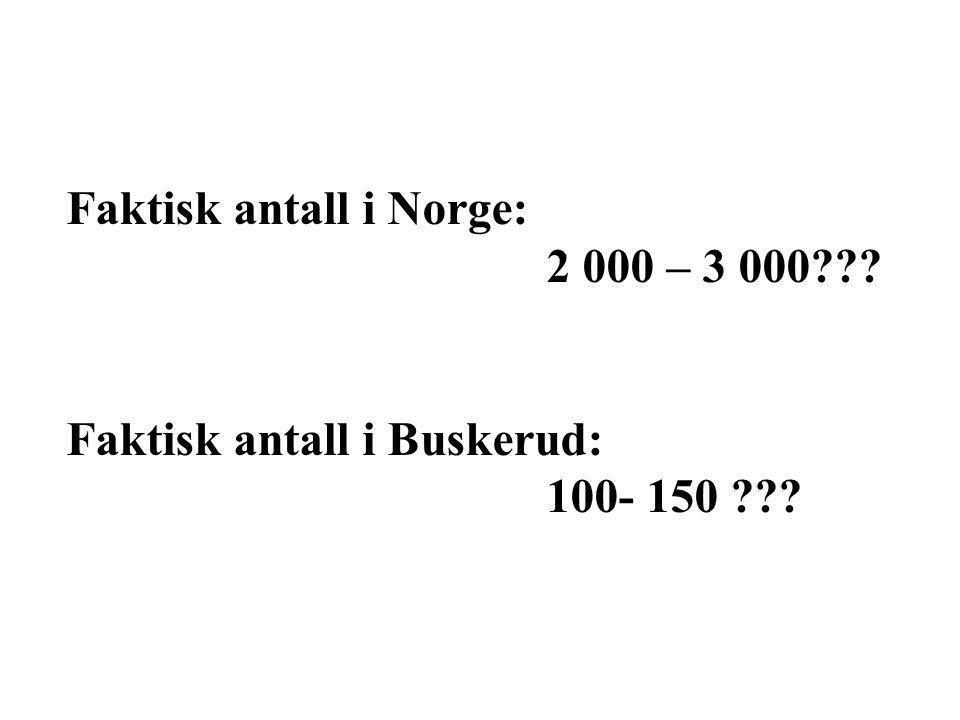 Faktisk antall i Norge: 2 000 – 3 000??? Faktisk antall i Buskerud: 100- 150 ???