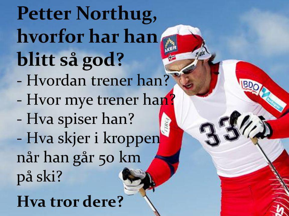 Petter Northug, hvorfor har han blitt så god? - Hvordan trener han? - Hvor mye trener han? - Hva spiser han? - Hva skjer i kroppen når han går 50 km p