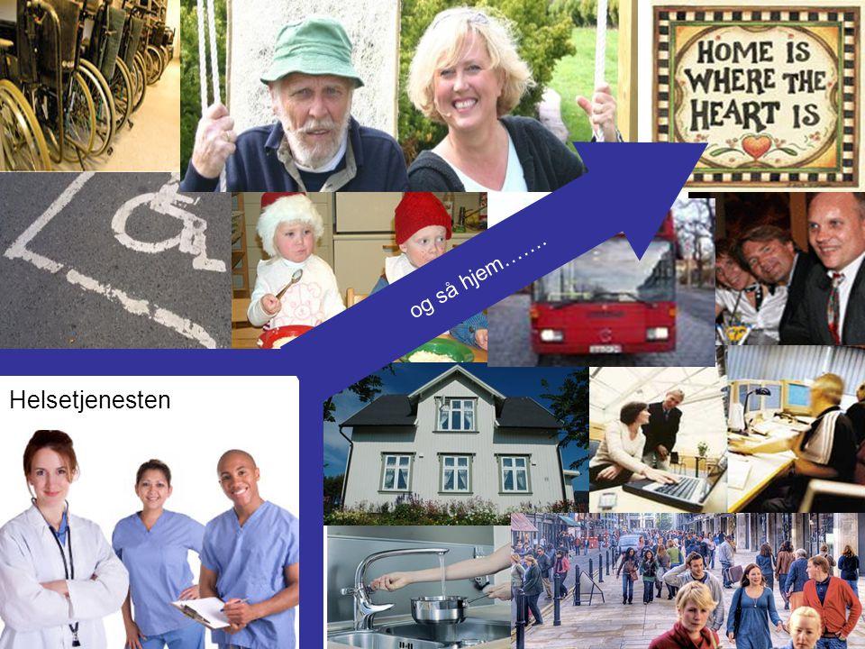 Ny lov om helse- og omsorgstjenester