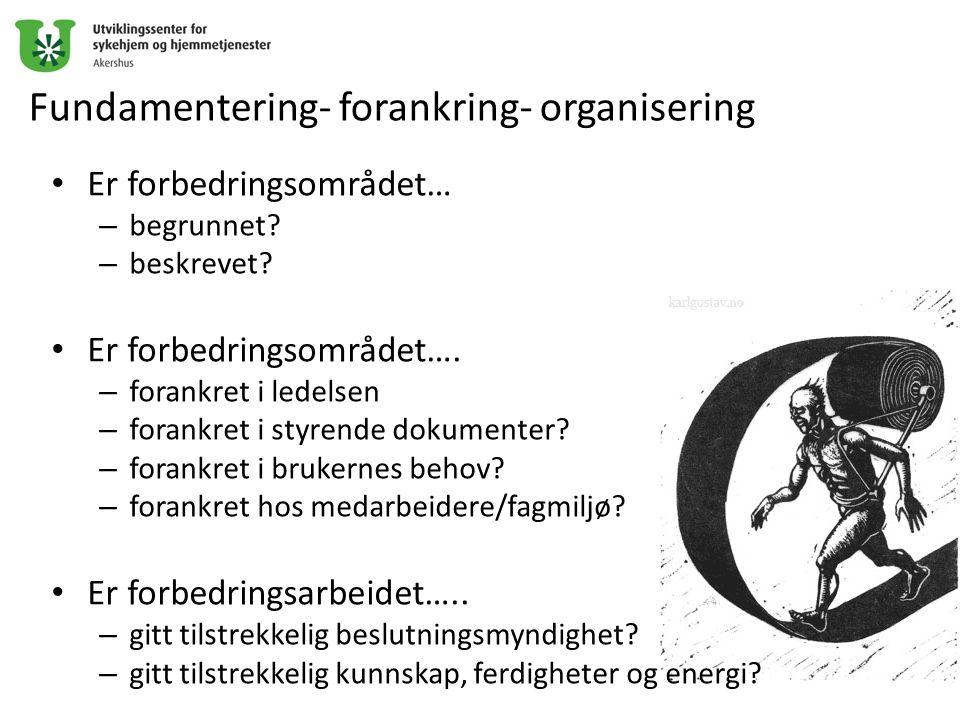 Fundamentering- forankring- organisering Er forbedringsområdet… – begrunnet? – beskrevet? Er forbedringsområdet…. – forankret i ledelsen – forankret i