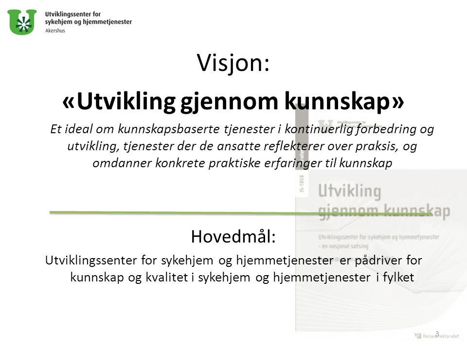 Visjon: «Utvikling gjennom kunnskap» Et ideal om kunnskapsbaserte tjenester i kontinuerlig forbedring og utvikling, tjenester der de ansatte reflekter