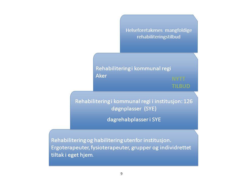 9 Rehabilitering og habilitering utenfor institusjon. Ergoterapeuter, fysioterapeuter, grupper og individrettet tiltak i eget hjem. Rehabilitering i k
