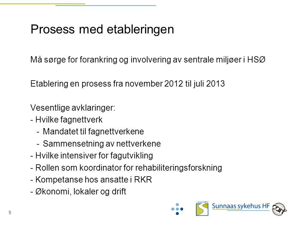 5 Prosess med etableringen Må sørge for forankring og involvering av sentrale miljøer i HSØ Etablering en prosess fra november 2012 til juli 2013 Vese