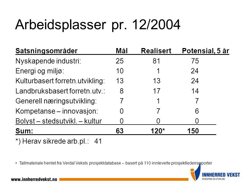 Arbeidsplasser pr. 12/2004 SatsningsområderMålRealisert Potensial, 5 år Nyskapende industri: 25 8175 Energi og miljø:10 1 24 Kulturbasert forretn.utvi