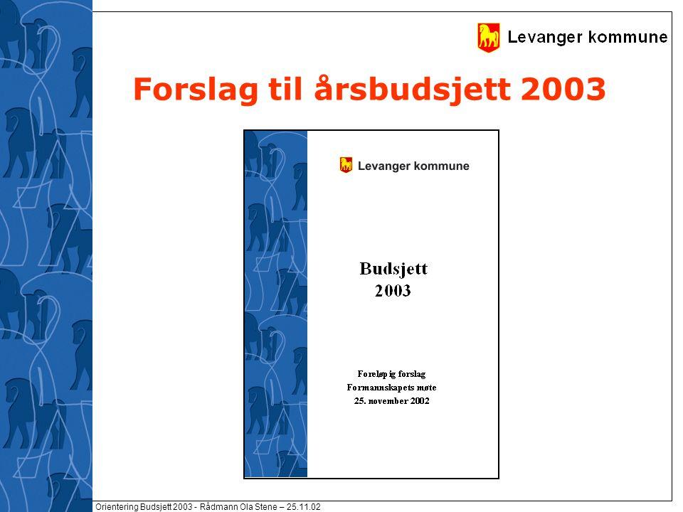 Orientering Budsjett 2003 - Rådmann Ola Stene – 25.11.02 Forslag til årsbudsjett 2003