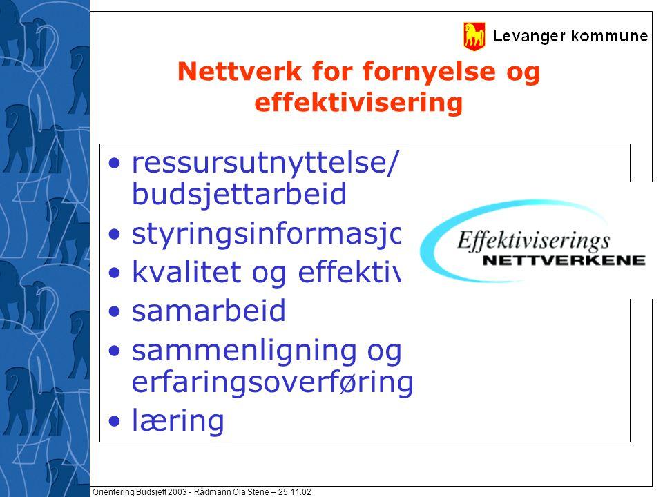 Orientering Budsjett 2003 - Rådmann Ola Stene – 25.11.02 Nettverk for fornyelse og effektivisering ressursutnyttelse/ budsjettarbeid styringsinformasj