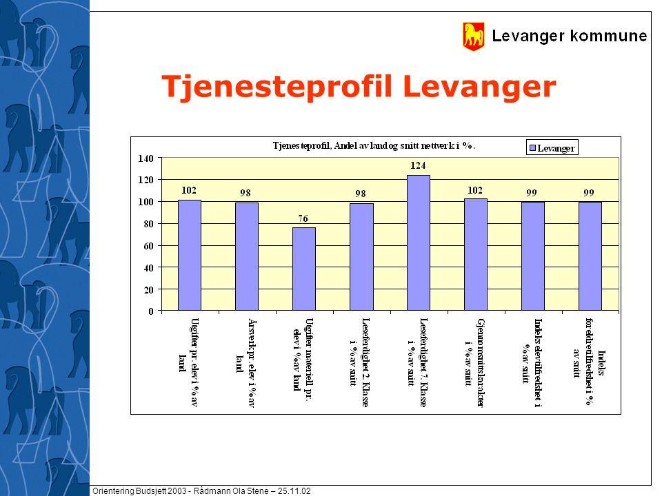 Orientering Budsjett 2003 - Rådmann Ola Stene – 25.11.02 Tjenesteprofil Levanger