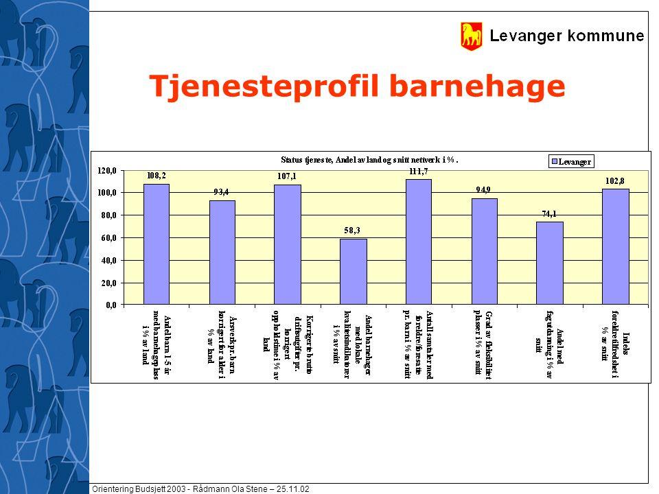 Orientering Budsjett 2003 - Rådmann Ola Stene – 25.11.02 Tjenesteprofil barnehage