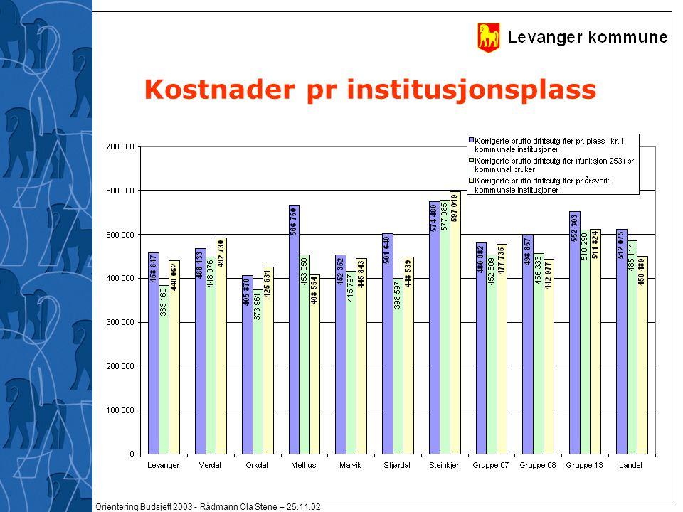 Orientering Budsjett 2003 - Rådmann Ola Stene – 25.11.02 Kostnader pr institusjonsplass