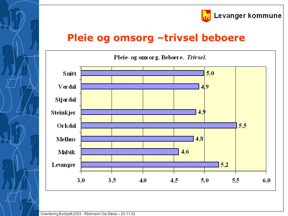 Orientering Budsjett 2003 - Rådmann Ola Stene – 25.11.02 Pleie og omsorg –trivsel beboere