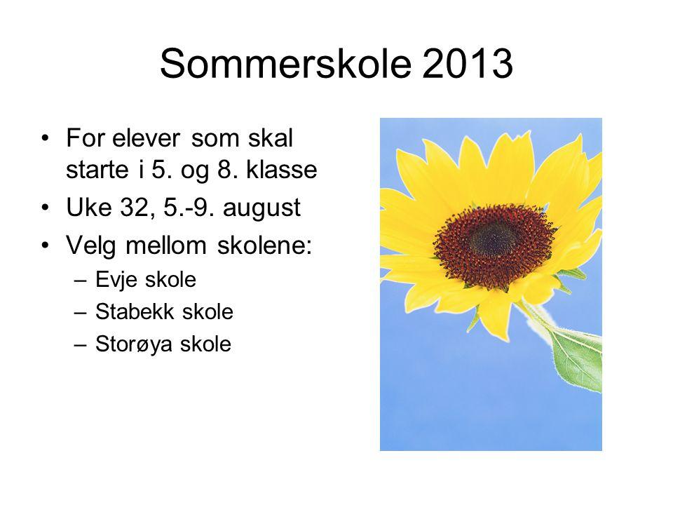 Sommerskole 2013 For elever som skal starte i 5. og 8. klasse Uke 32, 5.-9. august Velg mellom skolene: –Evje skole –Stabekk skole –Storøya skole