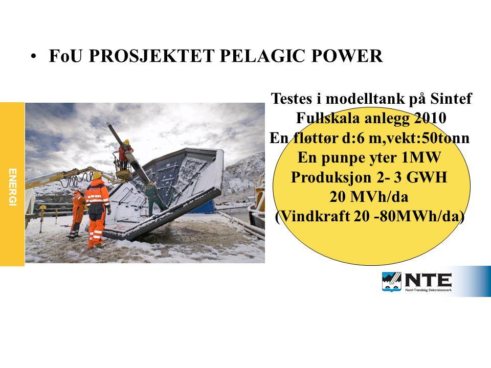 ENERGI FOU PROSJEKTET PELAGICK POWER FoU PROSJEKTET PELAGIC POWER Testes i modelltank på Sintef Fullskala anlegg 2010 En fløttør d:6 m,vekt:50tonn En punpe yter 1MW Produksjon 2- 3 GWH 20 MVh/da (Vindkraft 20 -80MWh/da)