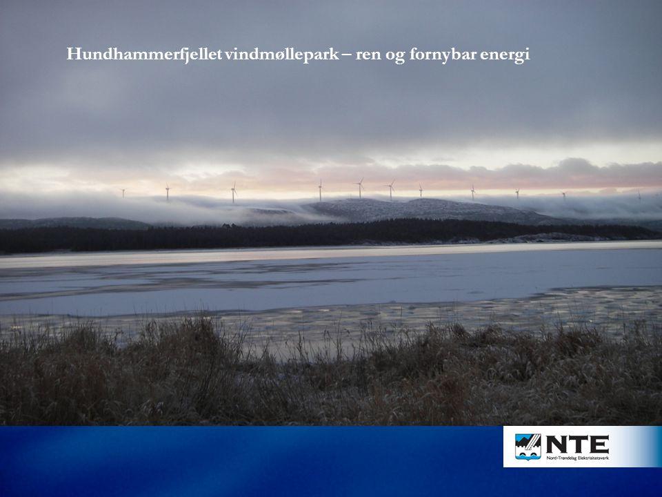 ENERGIDILEMMAET Hundhammerfjellet vindmøllepark – ren og fornybar energi