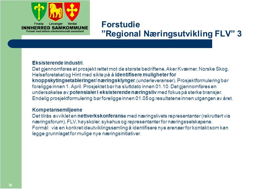 36 Forstudie Regional Næringsutvikling FLV 3 Eksisterende industri.