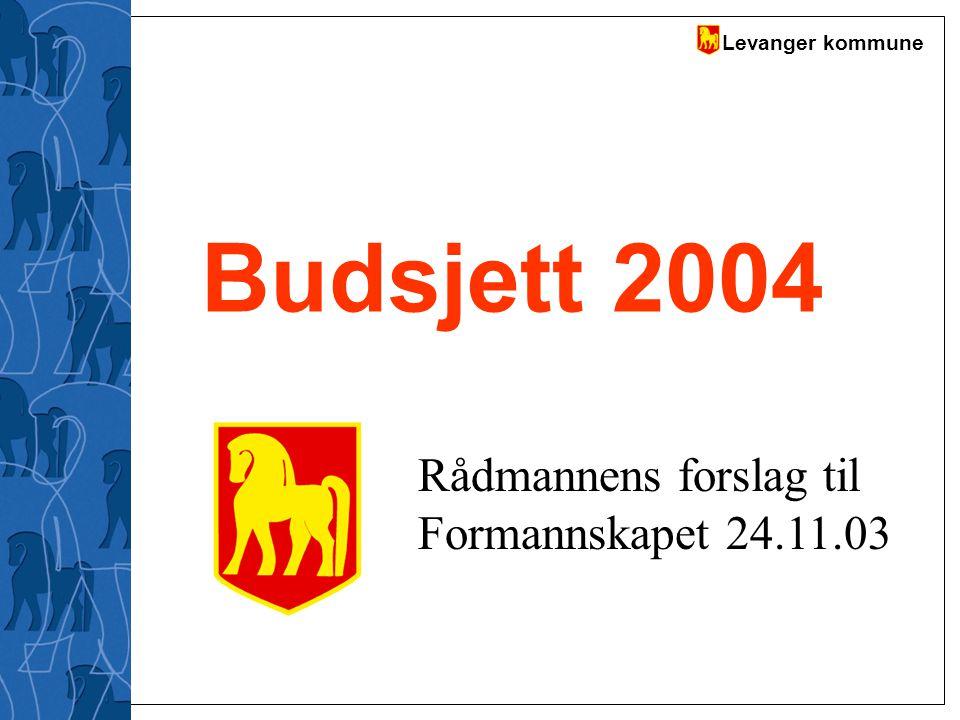 Levanger kommune Budsjett 2004 Rådmannens forslag til Formannskapet 24.11.03