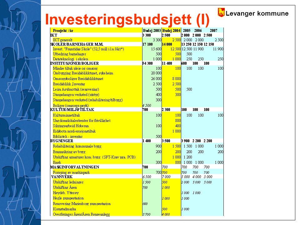 Levanger kommune Investeringsbudsjett (I)