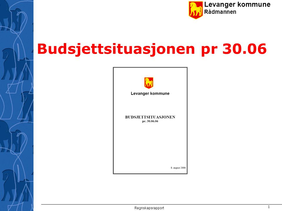 Levanger kommune Rådmannen Regnskapsrapport 1 Budsjettsituasjonen pr 30.06